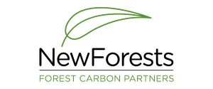 Silver_FCP-new-forests